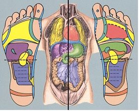 reflexology-fig2